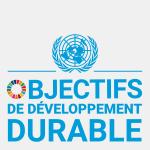 Logo des objectifs de développement durable, texte en bleu sur fond blanc